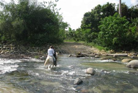Trittsicher: Um den Fluss auf dem Weg zur Finca zu überqueren, bekommt man Hilfe von einem freundlichen Vierbeiner
